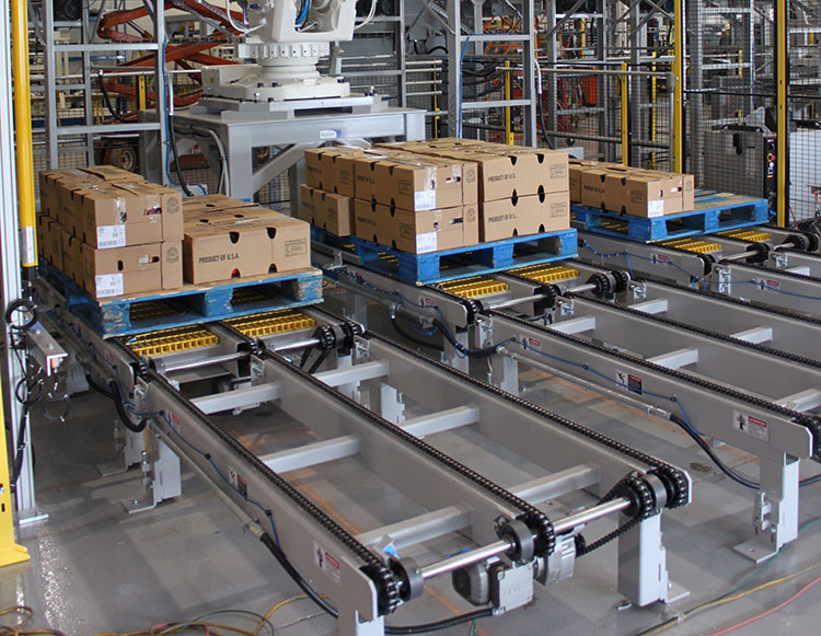 pallet chain conveyors in haryana
