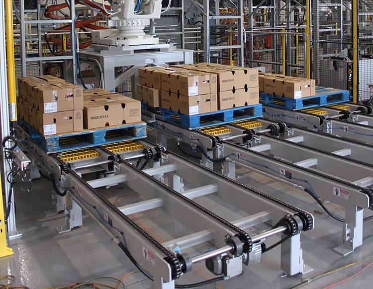 pallet chain conveyors in haryana