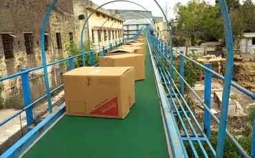 Box Transfer Conveyor